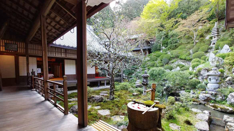 【めがねスポット巡り・後編】そうだ、目の神様を巡りに京都行こう!